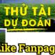 du-dpan-bong-da