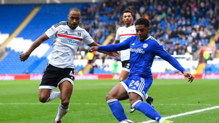 Cardiff City vs Fulham