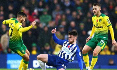 Soi kèo bóng đá hôm nay Norwich City vs Brighton, 21h ngày 16/10